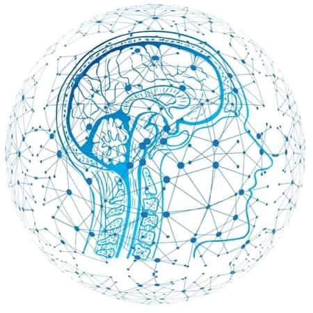 Mentale fitheid speelt een cruciale rol in organisaties   EverDevelop